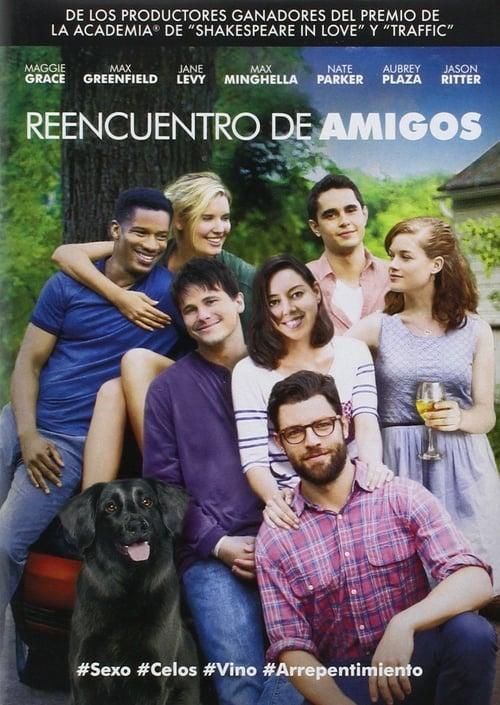 Película Reencuentro de amigos En Buena Calidad Hd 720p