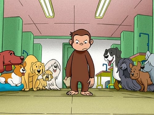 Curious George: Season 1 – Episod Curious George, Dog Counter