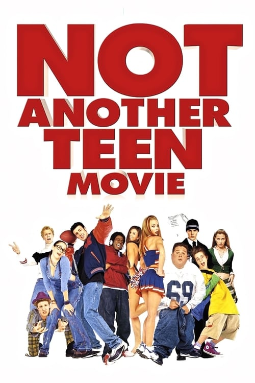The poster of Not Another Teen Movie