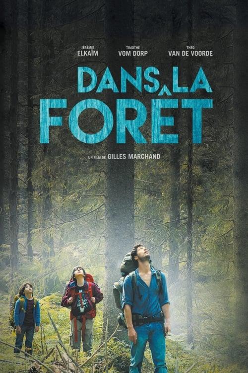 Dans la forêt Film en Streaming HD