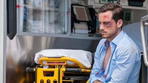 Chicago P.D.: Season 3 – Episode Life Is Fluid