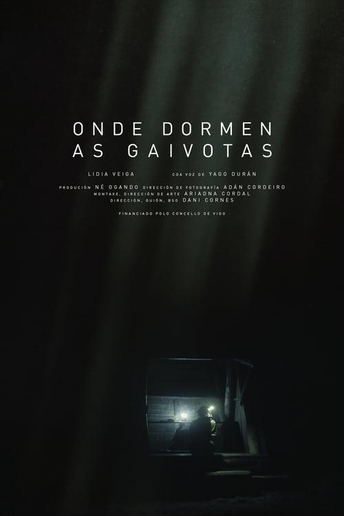 Stáhnout Film Onde dormen as gaivotas V Češtině