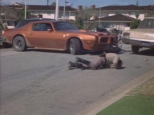 Chips 1977 Amazon Video: Season 1 – Episode Crack-Up