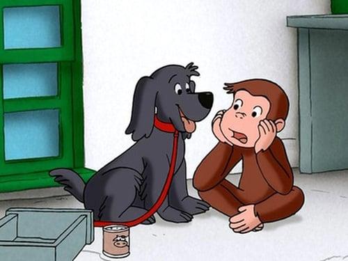 Curious George 2006 720p Webdl: Season 1 – Episode Charkie Escapes