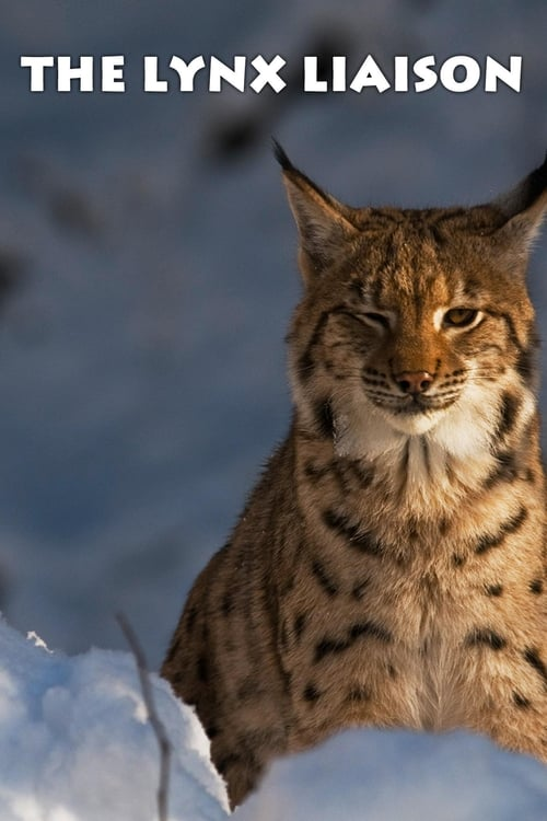 undefined ( The Lynx Liaison )