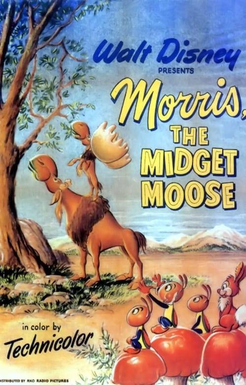 Morris la piccola alce