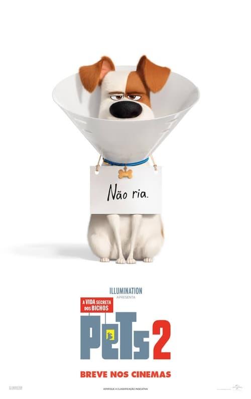Assistir Pets: A Vida Secreta dos Bichos 2