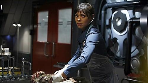 Bones: Season 3 – Episod The Knight on the Grid