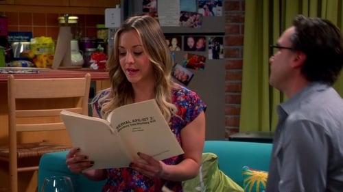 The Big Bang Theory - Season 7 - Episode 19: The Indecision Amalgamation