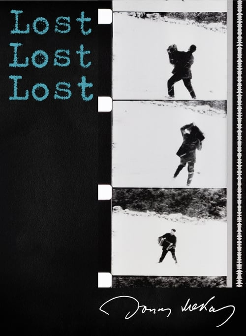 Mira La Película Lost, Lost, Lost Doblada Por Completo
