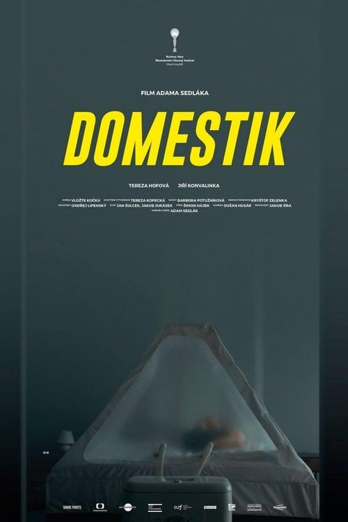 Download Domestik Full Duplicate Herunter