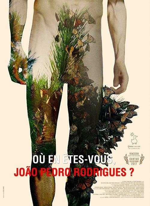Where Do You Stand Now, João Pedro Rodrigues? (2016)