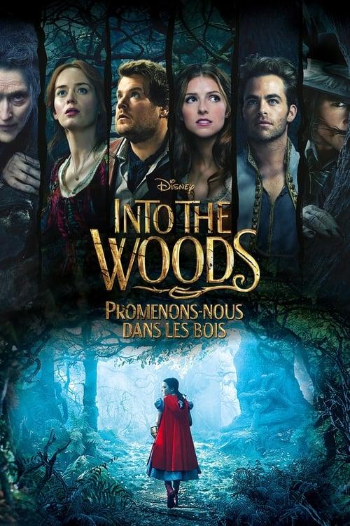 ♛ Into the Woods : Promenons-nous dans les bois (2014) ®