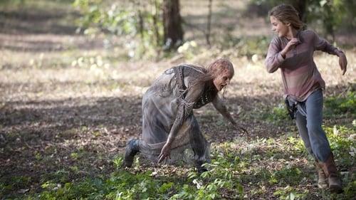 The Walking Dead - Season 4 - Episode 14: The Grove