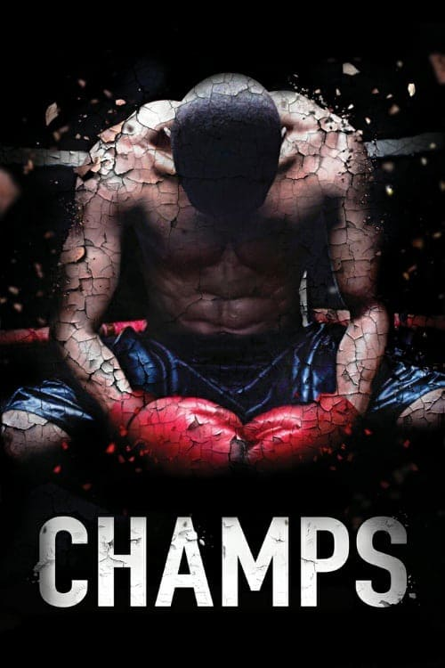 [VF] Champs (2015) streaming