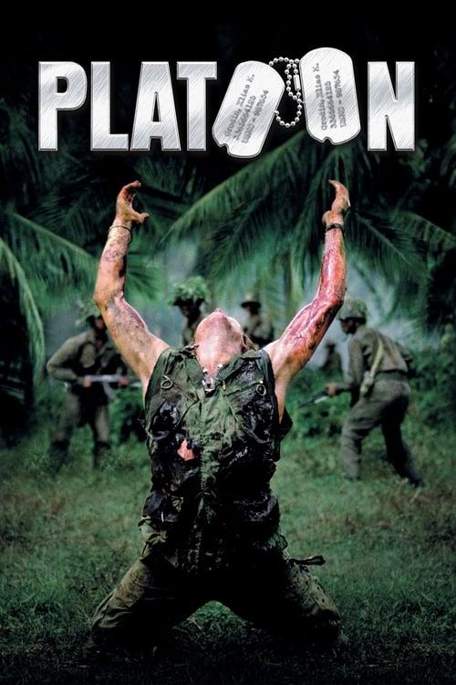 Platoon pelicula completa