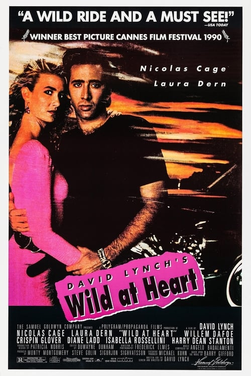 Streaming Wild at Heart (1990) Full Movie