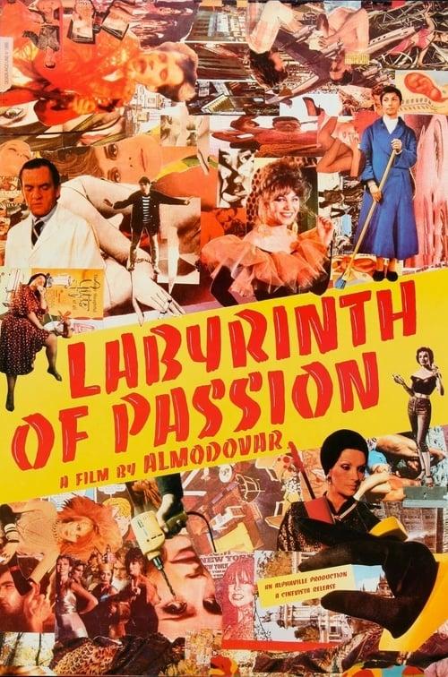 Largescale poster for Laberinto de pasiones