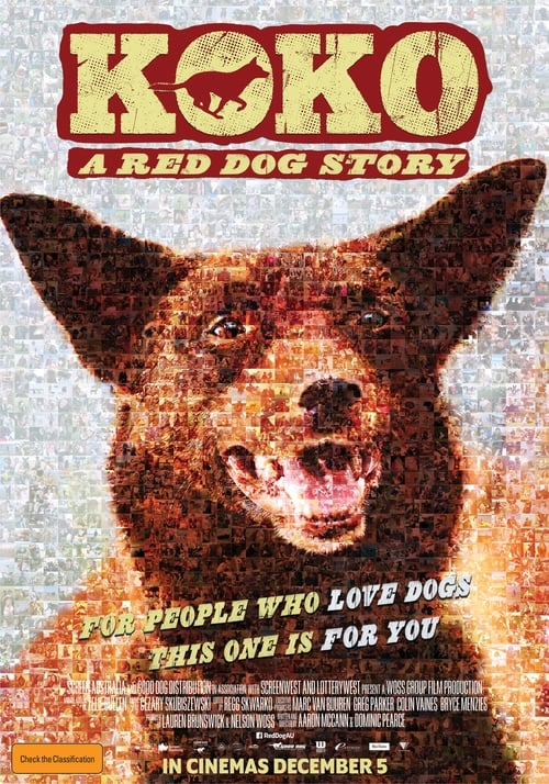 فيلم Koko: A Red Dog Story في جودة HD جيدة