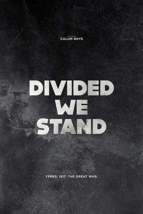 Divided We Stand Pirate Bay