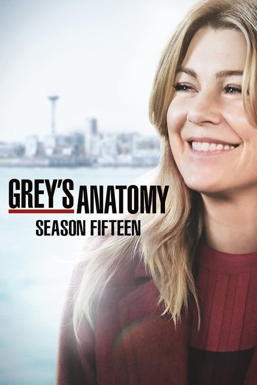 Grey X27 S Anatomy: Season 15