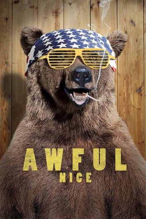 Awful Nice (2013) Poster