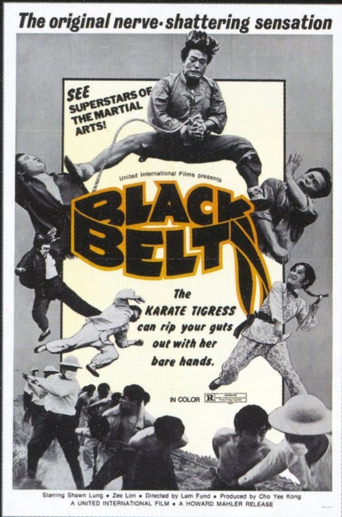 Película Black Belt Gratis