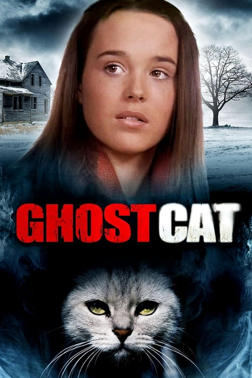 Mrs. Ashboro's Cat