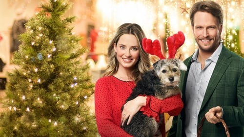 Picture a Perfect Christmas (2019)