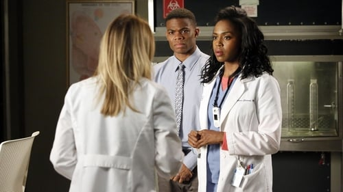 Grey's Anatomy - Season 10 - Episode 16: We Gotta Get Out of This Place