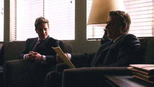 The Good Wife - Season 3 - Episode 17: Long Way Home