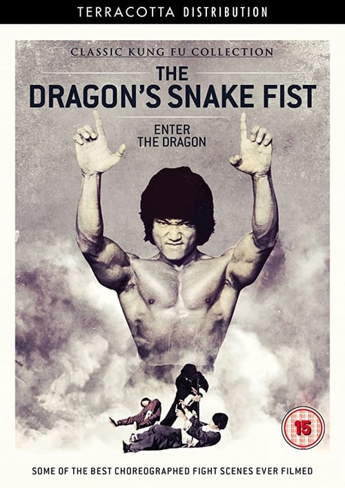 The Dragon's Snake Fist