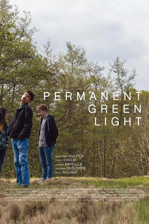 Voir ۩۩ Permanent Green Light Film en Streaming Entier