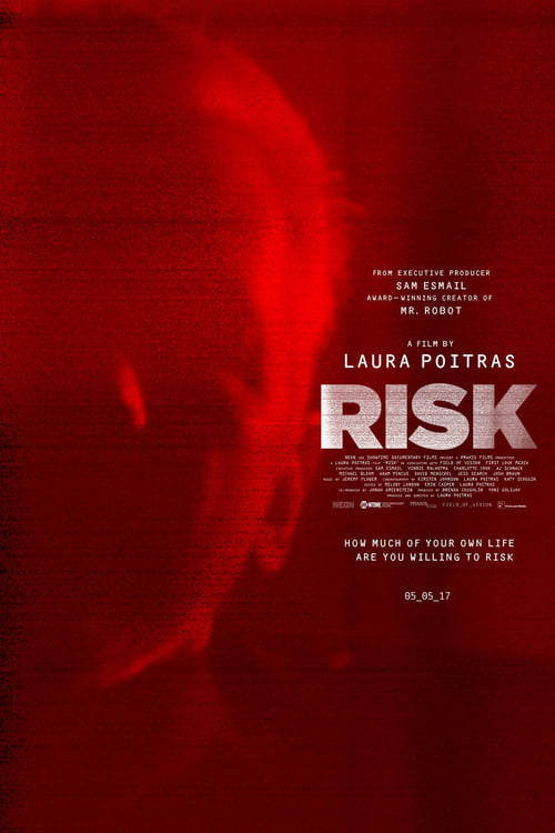 Where Can I Watch Risk Online
