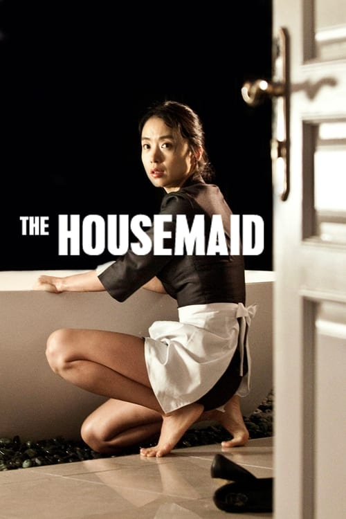 Largescale poster for The Housemaid