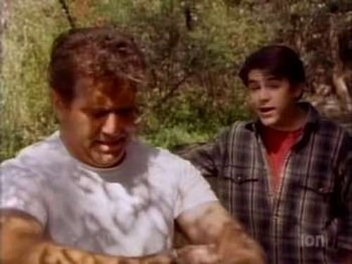 Watch The Wonder Years S6E02 Online