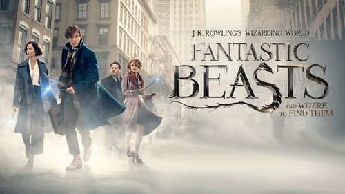 Fantastic Beasts and Where to Find Them (2016)