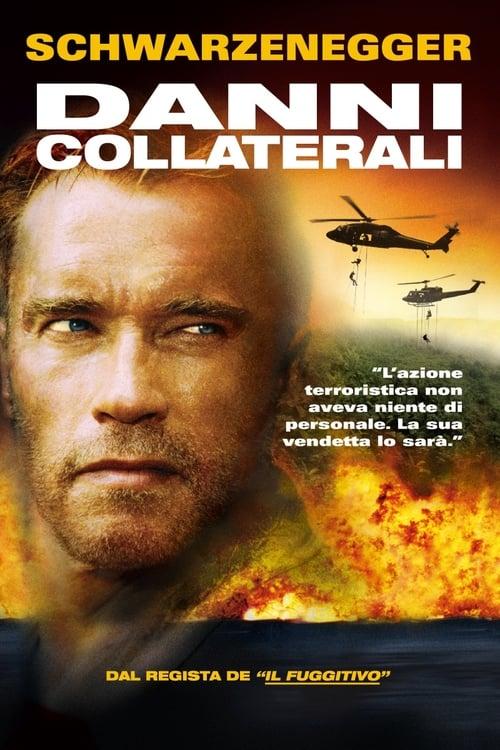 Danni collaterali (2002)