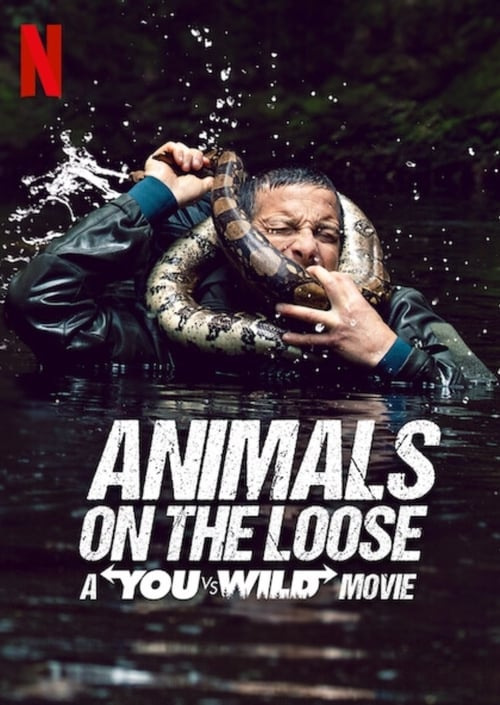 LikeFree!! Animals on the Loose: A You vs. Wild Interactive Movie Online Free