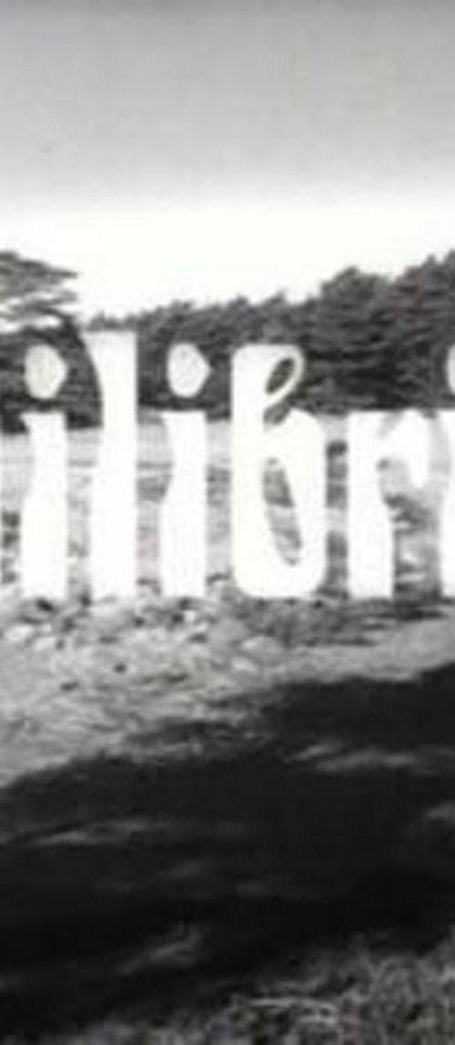 Equilibrium - It's me you should love (1965)