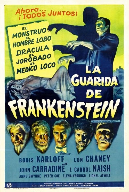 Ver La mansión de Frankenstein Duplicado Completo