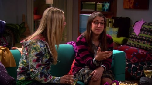 The Big Bang Theory - Season 4 - Episode 22: The Wildebeest Implementation