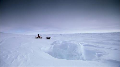 Top Gear – Polar Special – Directors Cut
