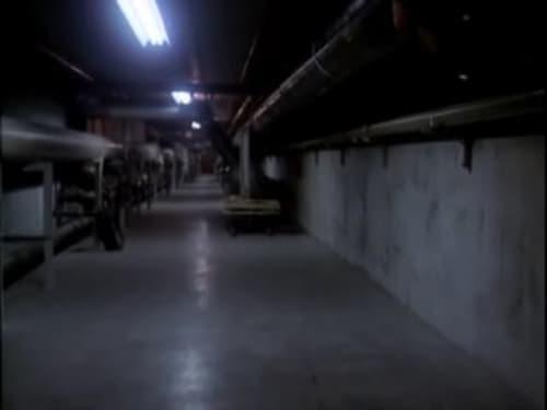 Assistir MacGyver – Profissão: Perigo S01E13 – 1×13 – Dublado
