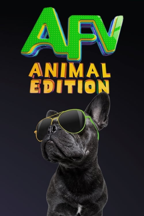 undefined ( America's Funniest Home Videos: Animal Edition )