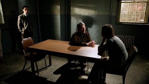 Law & Order: Special Victims Unit: Season 9 – Épisode Alternate