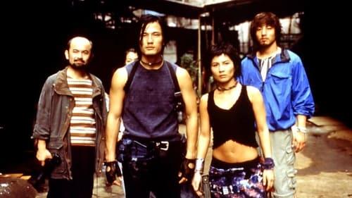 Dead or Alive: Final (2002)