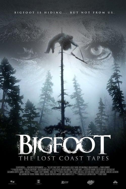Descargar Bigfoot: The Lost Coast Tapes en torrent