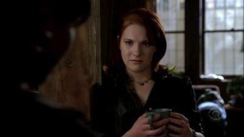 Without a Trace: Season 5 – Episod Skin Deep