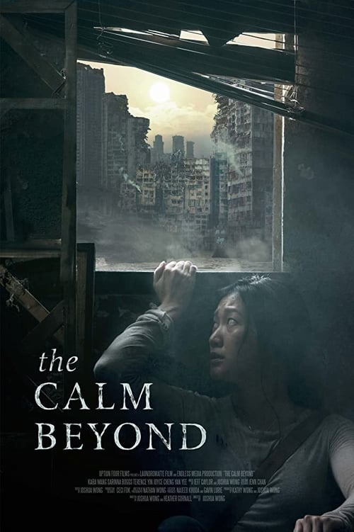 Download The Calm Beyond Subtitle